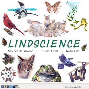 Lindscience