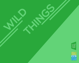 Open Call for Artists - Wild Things