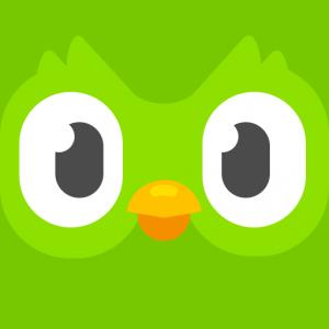 Duolingo Public Art Opportunity